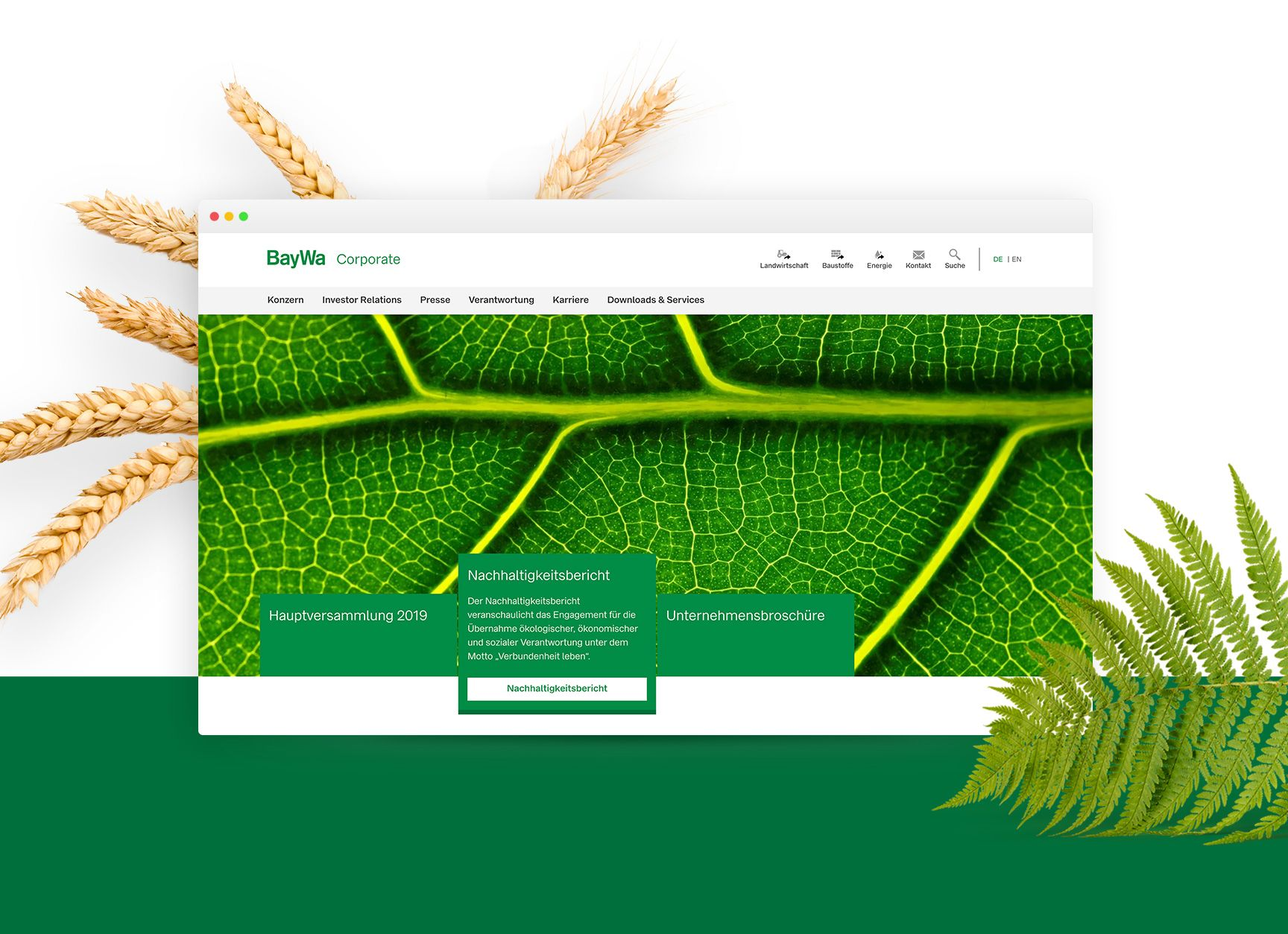 Successful relaunch: New corporate website for BayWa AG comes from diva-e